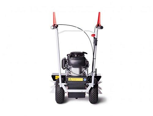 4f kehrmaschine limpar 67 honda gcv motor. Black Bedroom Furniture Sets. Home Design Ideas