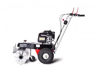 4F Kehrmaschine Limpar 67 Honda GCV Motor