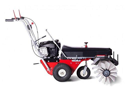 4F Kehrmaschine Limpar 82 Vario B&S Motor
