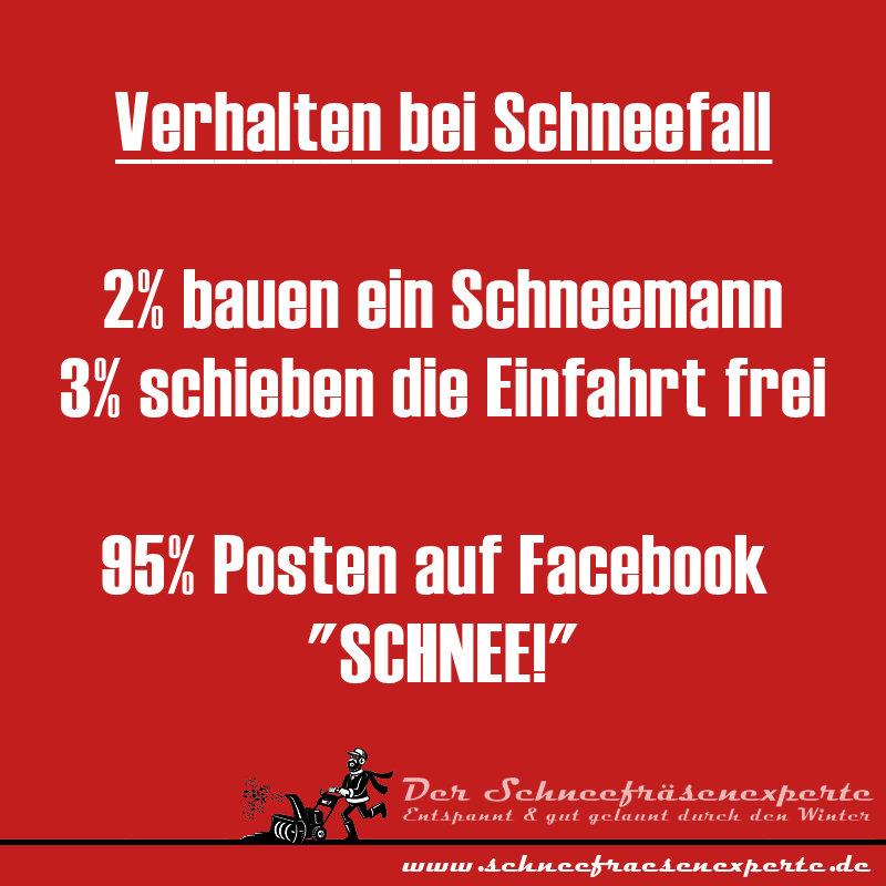 """Verhalten bei Schneefall 2% bauen ein Schneemann 3% schieben die Einfahrt frei 95% Posten auf Facebook  """"SCHNEE!"""""""